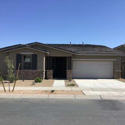 Queen Creek Single Family Home For Sale: 23137 E Camina Buena Vista