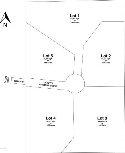 Residential Lots & Land For Sale: 7402 E Aribiome Court
