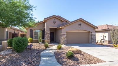 Phoenix Single Family Home For Sale: 1629 W Dion Drive