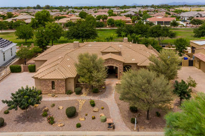 Gilbert AZ Single Family Home For Sale: $975,000