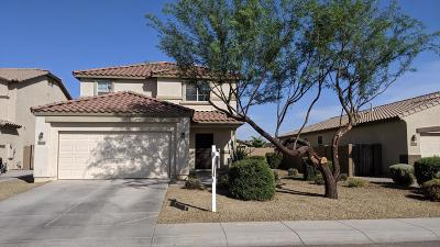 Mesa,  San Tan Valley,  Queen Creek, Gold Canyon Single Family Home For Sale: 36165 N Red River Court