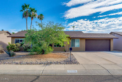 Phoenix Single Family Home For Sale: 4053 E Aster Drive