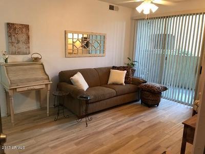 Phoenix Rental For Rent: 3302 N 7th Street #161