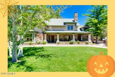 Prescott Single Family Home For Sale: 2450 N Shadow Valley Ranch Trail