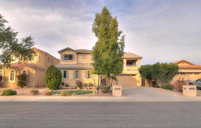 Maricopa Single Family Home For Sale: 41096 W Novak Lane