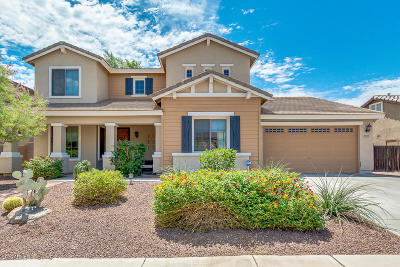 Queen Creek Single Family Home For Sale: 18585 E Ryan Road