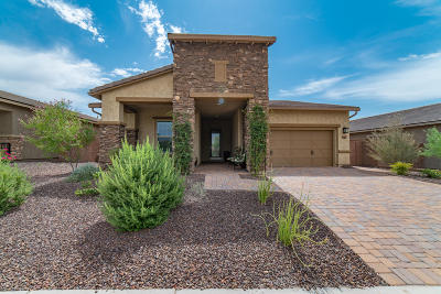 Peoria Single Family Home For Sale: 29329 N 119th Lane