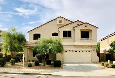 Surprise Single Family Home For Sale: 16369 W Sierra Street
