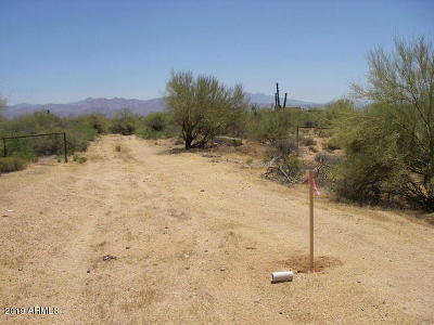 Rio Verde Residential Lots & Land For Sale: 17521 E Whitethorn Drive
