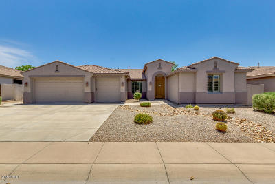 Mesa Single Family Home For Sale: 11533 E Roselle Avenue
