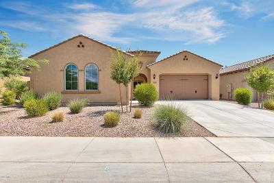 Mesa Single Family Home For Sale: 11121 E Tumbleweed Avenue
