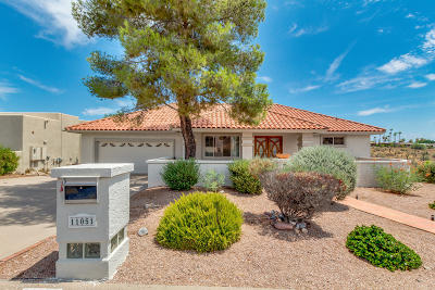Fountain Hills Single Family Home For Sale: 11051 N Pinto Drive