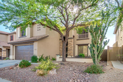 Anthem Single Family Home For Sale: 39802 N Integrity Trail
