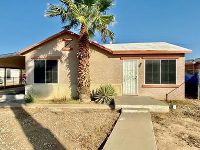 Avondale Single Family Home For Sale: 122 E Kinderman Drive
