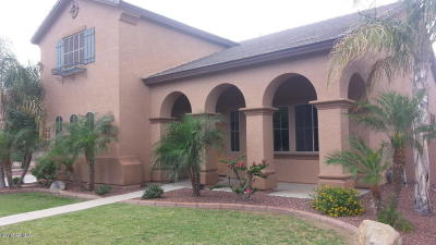 Surprise Single Family Home For Sale: 14447 W Poinsettia Drive