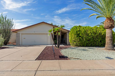 Mesa Single Family Home For Sale: 1027 Leisure World