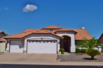 Sun City Single Family Home For Sale: 20359 N 109th Drive