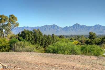 Paradise Valley Residential Lots & Land For Sale: 6519 E Hummingbird Lane