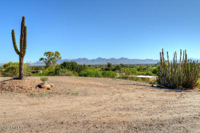Paradise Valley Residential Lots & Land For Sale: 6528 E Meadowlark Lane