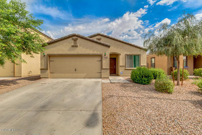 Maricopa Single Family Home For Sale: 38154 W Merced Street