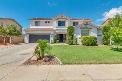 Mesa Single Family Home For Sale: 11336 E Savannah Avenue
