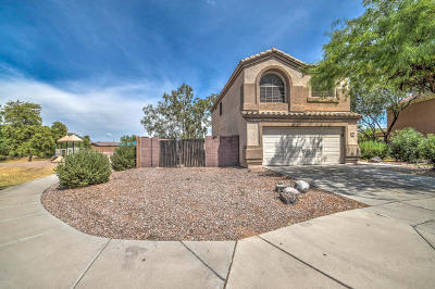 Queen Creek Single Family Home For Sale: 33189 N North Butte Drive