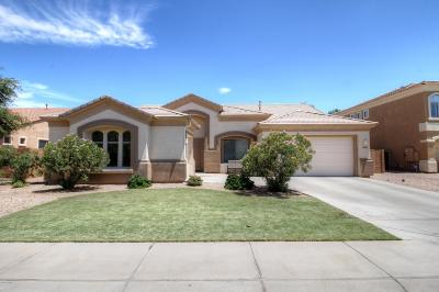 Gilbert Single Family Home For Sale: 1000 E Benrich Drive