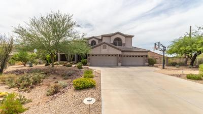 Cave Creek Single Family Home For Sale: 28426 N 61st Street