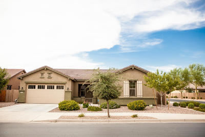 Queen Creek Single Family Home For Sale: 20856 E Arroyo Verde Drive