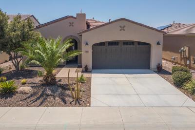 San Tan Valley Single Family Home For Sale: 793 E Harmony Way