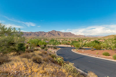 Gold Canyon Residential Lots & Land For Sale: 9750 E Treasure Place