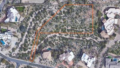 Scottsdale Residential Lots & Land For Sale: 24200 N Alma School Road