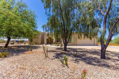 Phoenix Single Family Home For Sale: 821 E Desert Ranch Road