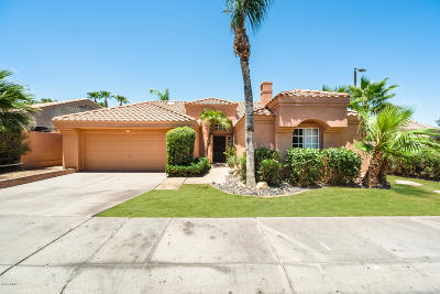 Chandler Single Family Home For Sale: 1975 W Peninsula Circle