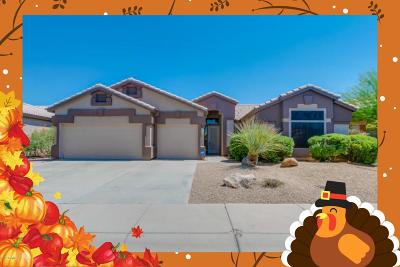 Cave Creek Single Family Home For Sale: 29429 N 46th Place