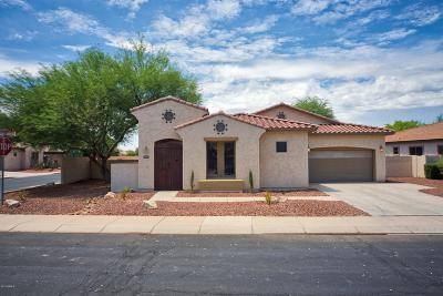 Chandler Single Family Home For Sale: 5840 S Mesquite Grove Way