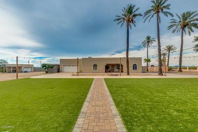 Phoenix Single Family Home For Sale: 9050 S 23rd Avenue