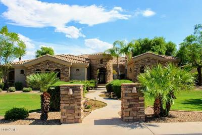 Chandler Single Family Home For Sale: 2089 E Cedar Place