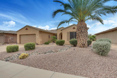 Surprise Single Family Home For Sale: 17031 W Oasis Springs Way