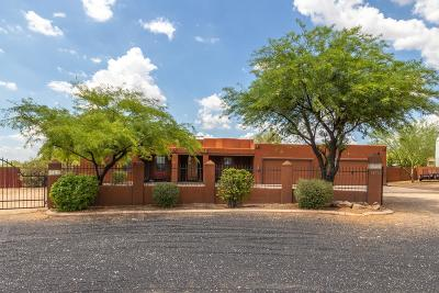 Phoenix Single Family Home For Sale: 38724 N 10th Street