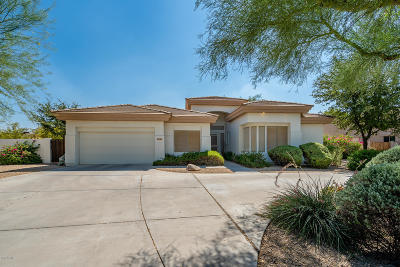 Litchfield Park Single Family Home For Sale: 14144 W Valley View Drive