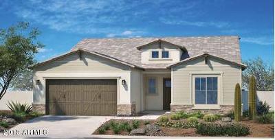 Surprise Single Family Home For Sale: 14644 W Georgia Drive
