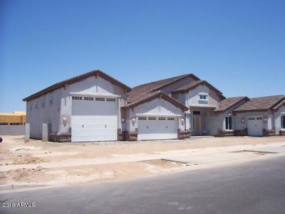 Queen Creek Single Family Home For Sale: 19240 S 196th Place