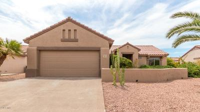 Sun City Grand Single Family Home For Sale: 20018 N Painted Sky Drive