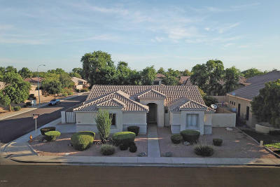 Chandler Single Family Home For Sale: 782 W Raven Drive