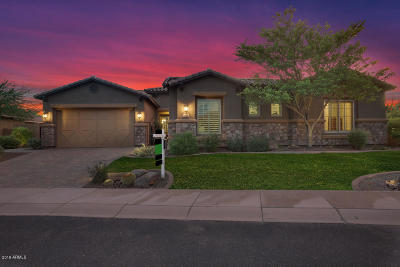 Peoria Single Family Home For Sale: 31606 N 128th Drive
