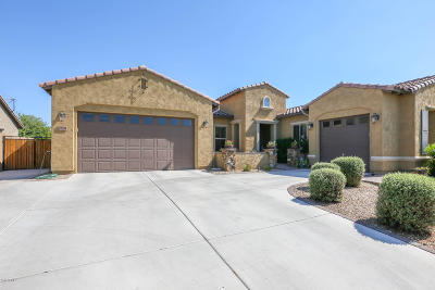 Queen Creek Single Family Home For Sale: 19894 E Strawberry Drive