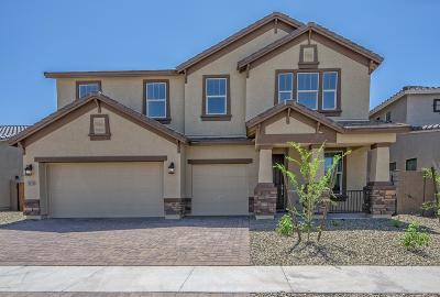Laveen Single Family Home For Sale: 5431 W Leodra Lane