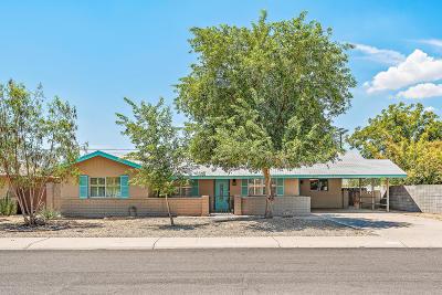 Tempe Single Family Home For Sale: 1039 E Loyola Drive