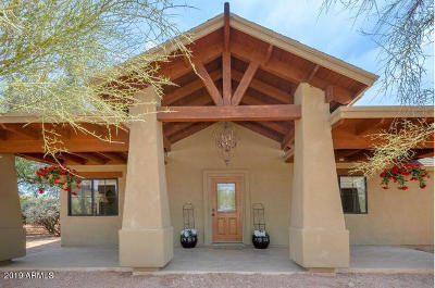 Cave Creek Single Family Home For Sale: 5537 E Yolantha Street